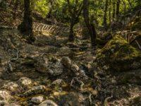 Долина Бабочек, остров Родос