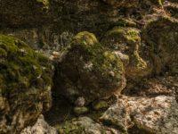 Долина Бабочек на Родос