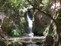 Долина Бабочек, Родос